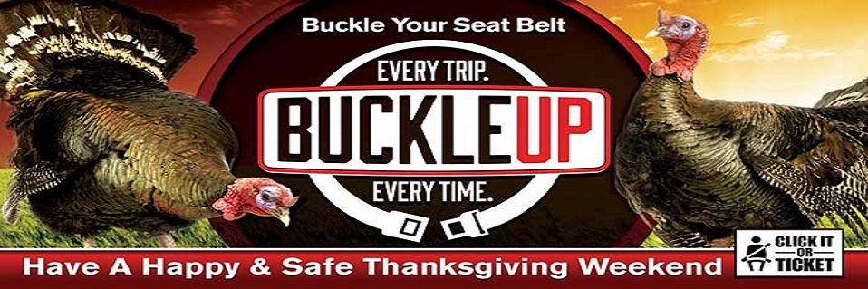 SAFE Enforcement, Monday, Nov 19 through Sunday, Nov 25