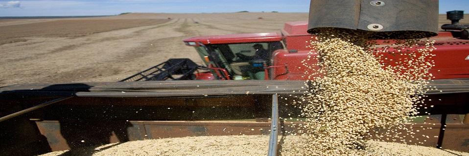 Harvest safety information